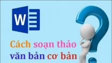 cach soan thao van ban word co ban cho nguoi moi bat dau